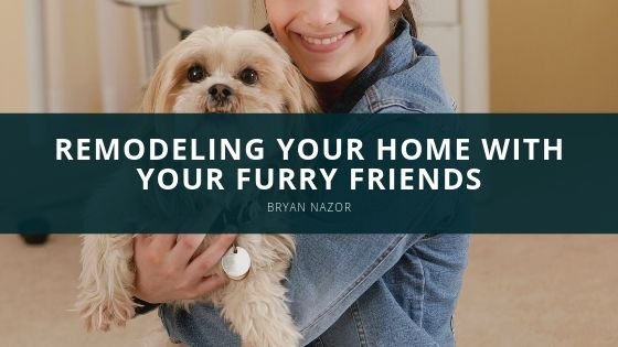 Bryan Nazor - Remodeling Your Home With Your Furry Friends