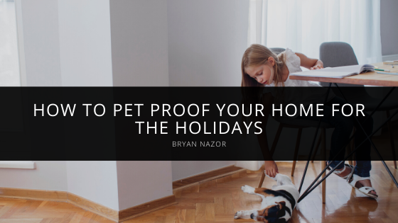 How to Pet Proof Your Home For the Holidays, With Tips From Bryan Nazor